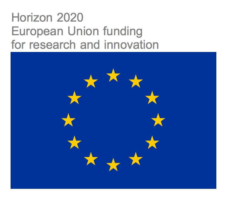 eu_flag_yellow_high_h2020